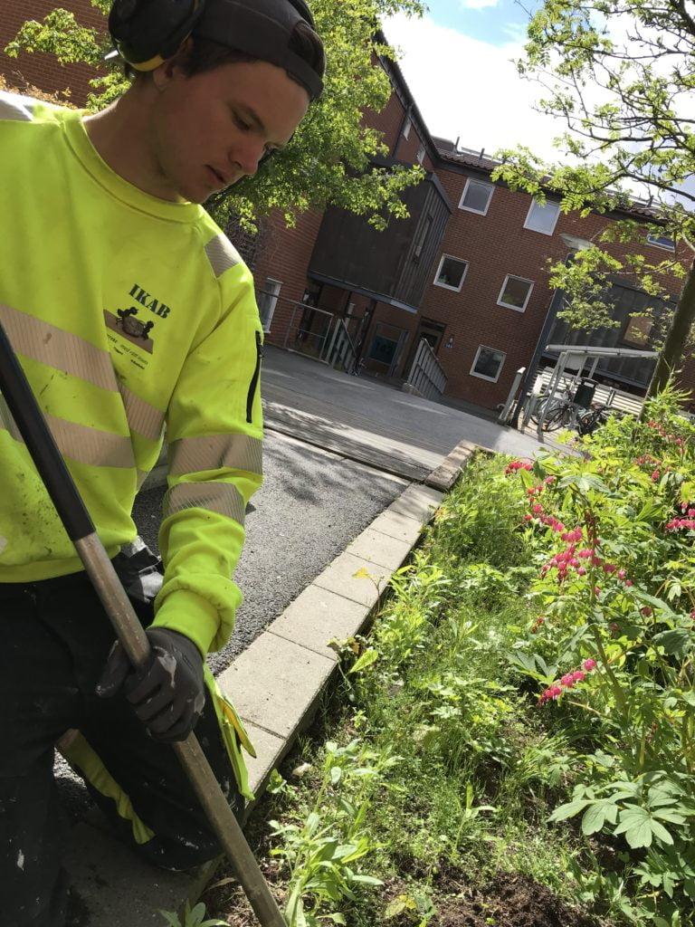 Trädgårdsarbete Göteborg